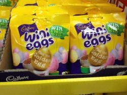 wini eggs